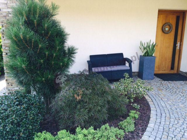 Allibert Corfu sofa przy eleganckiej rabacie ogrodowej