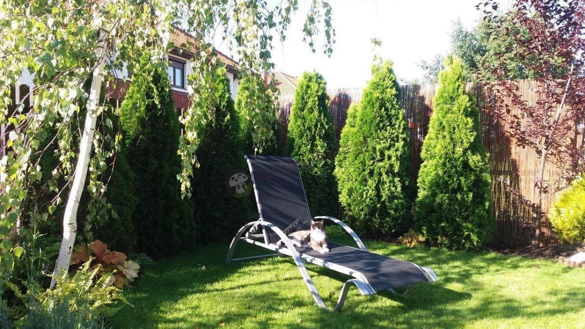 Aluminiowa leżanka Star z czarną siatką winylową w ogrodzie