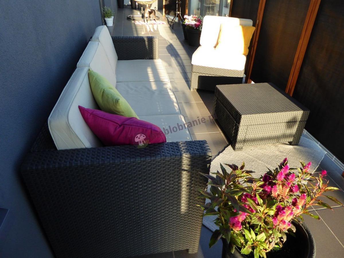 Balkonowe meble wypoczynkowe w kolorze grafitowym Modus