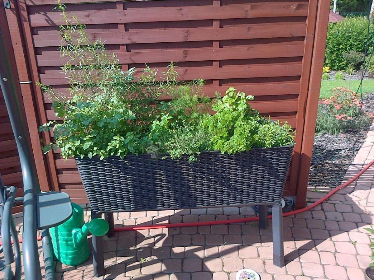 Długa doniczka ogrodowa z nóżkami rattan style Keter Easy Grow