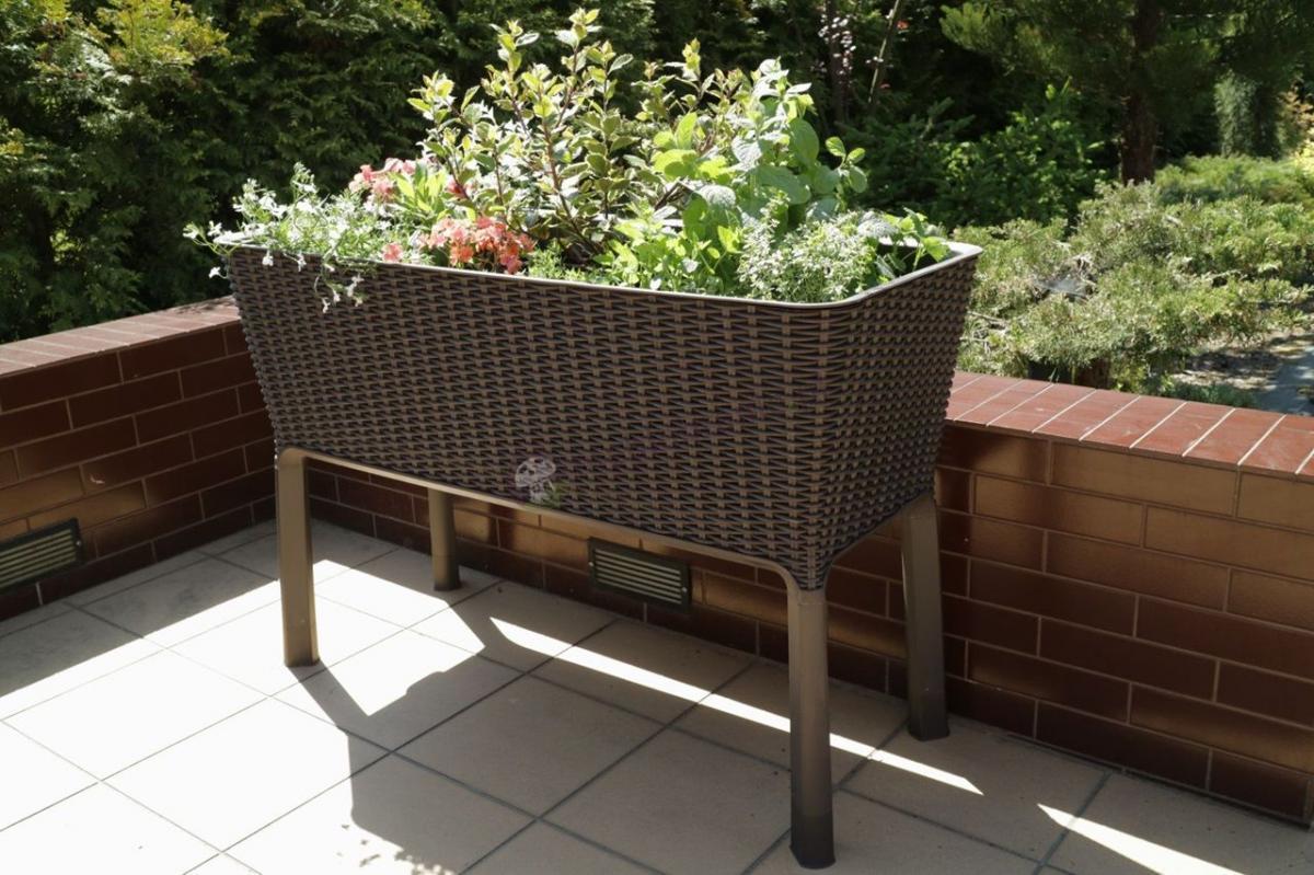 Doniczka prostokątna Easy Grow Rattan z ciekawą kompozycją kwiatową
