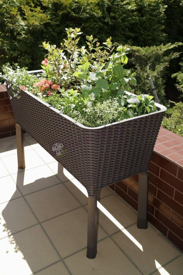 Doniczki plastikowe duże Easy Grow do hodowli warzyw na balkonie
