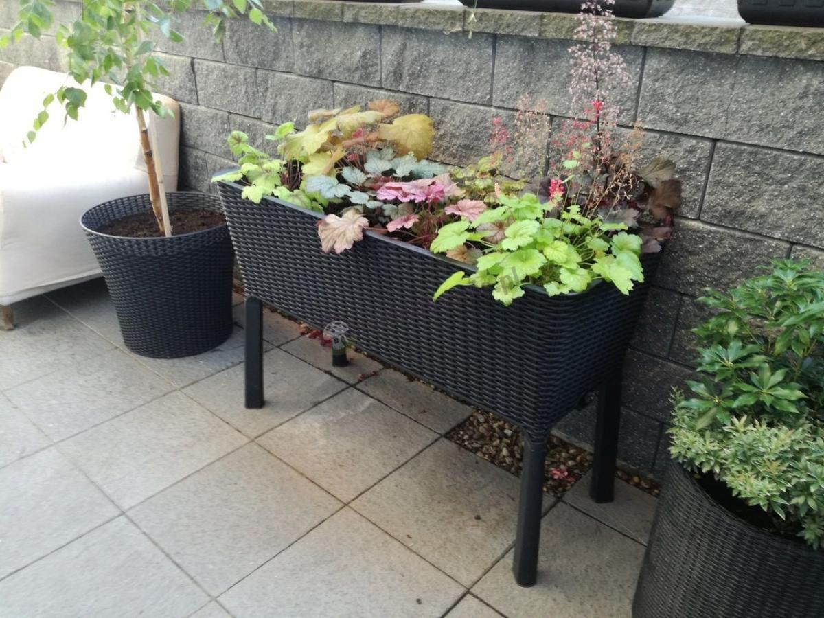 Duża donica prostokątna do ogrodu na nogach Keter Easy Grow Rattan