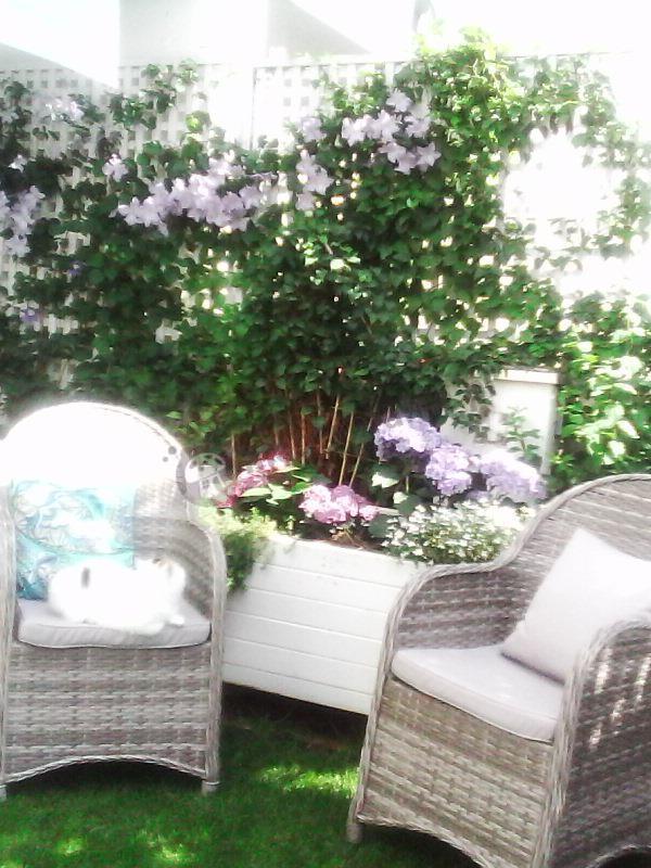 Ekskluzywne fotele ogrodowe technorattan z poduszkami na siedziska Altito