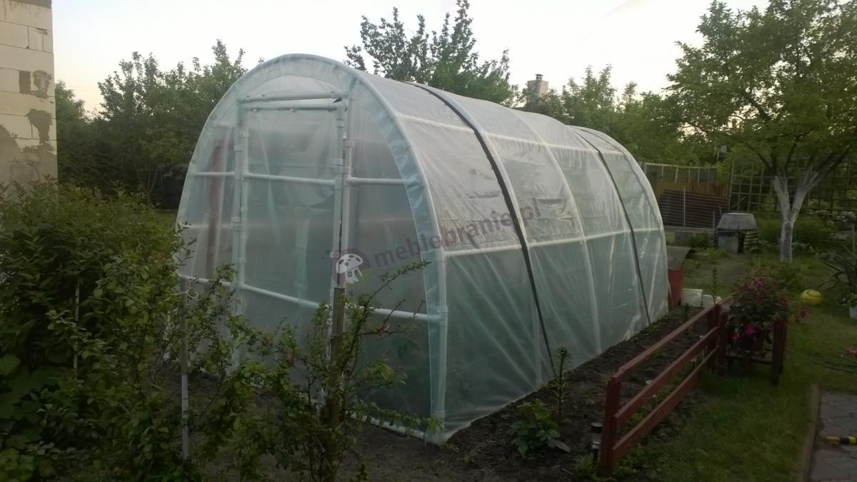 Foliak na pomidory Lemar 4x2,2m w zadbanym ogródku