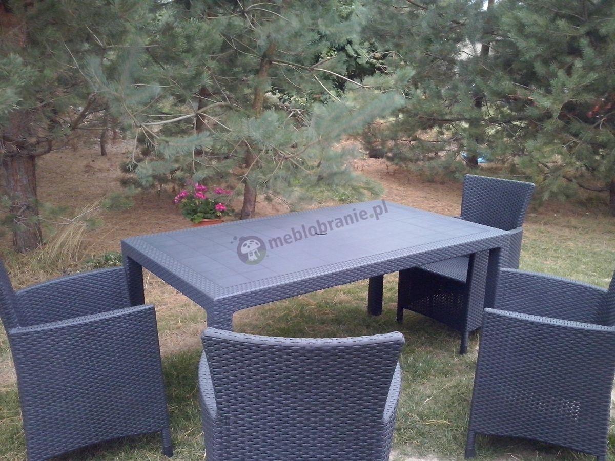 Komplet mebli obiadowych na leśnej działce