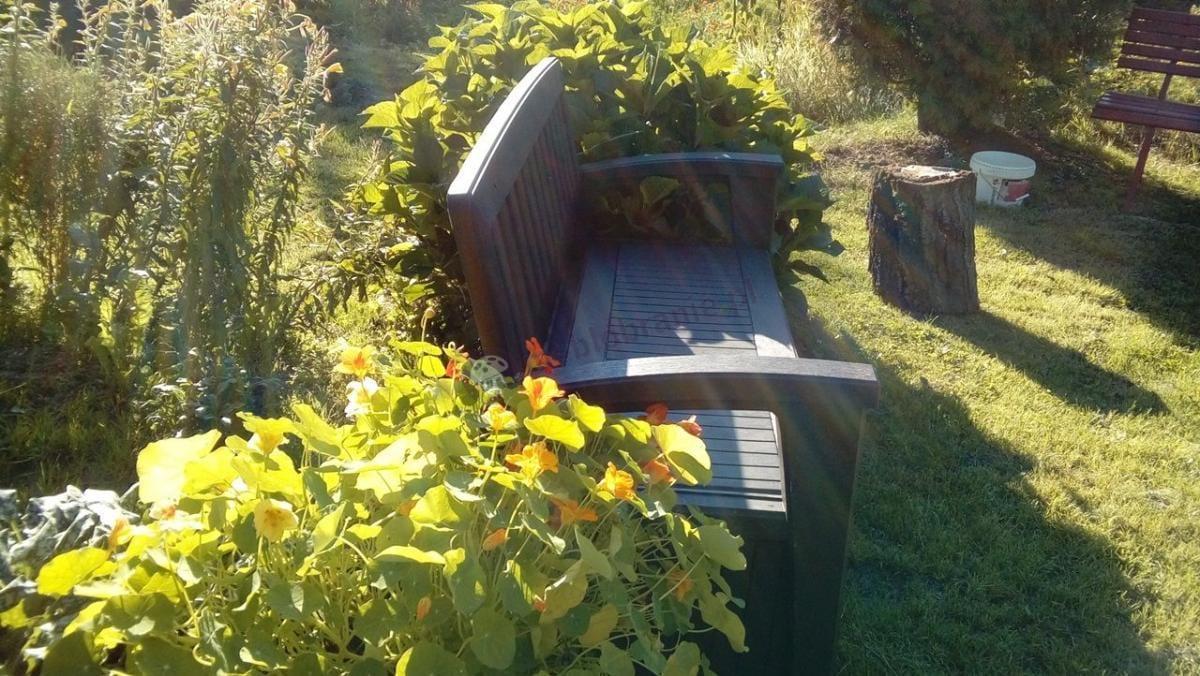 Ławka ogrodowa z pojemnikiem Keter Patio Bench w nasłonecznionym ogrodzie