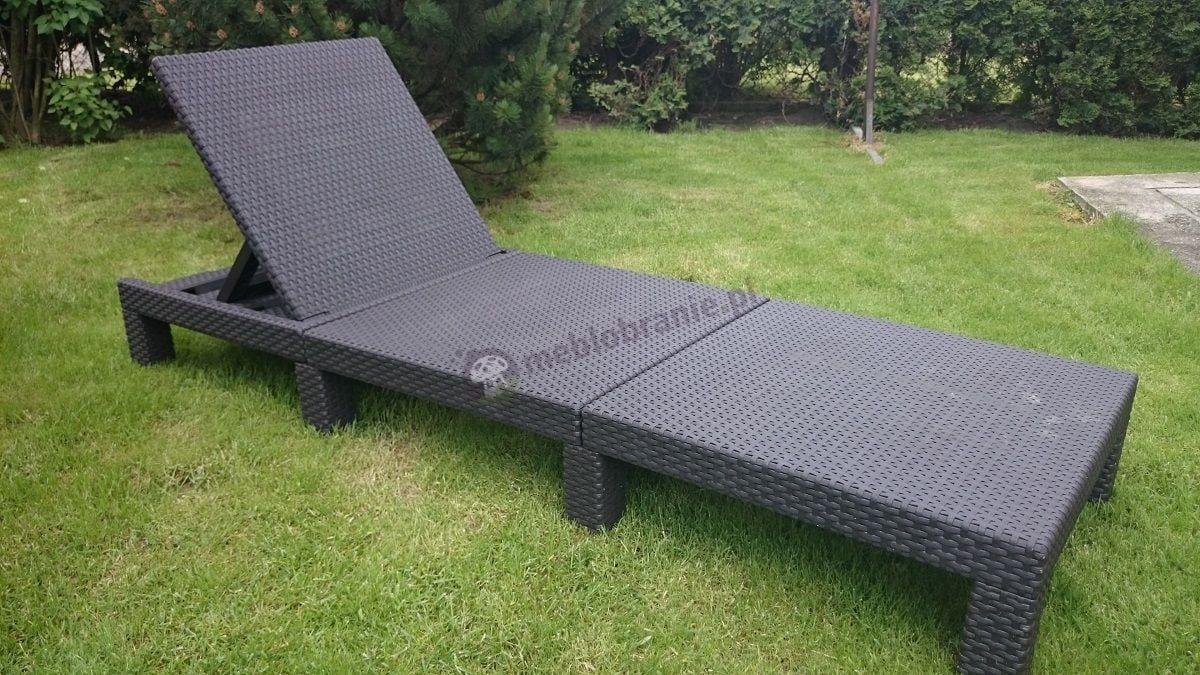 Leżak do ogrodu składany Daytona Allibert