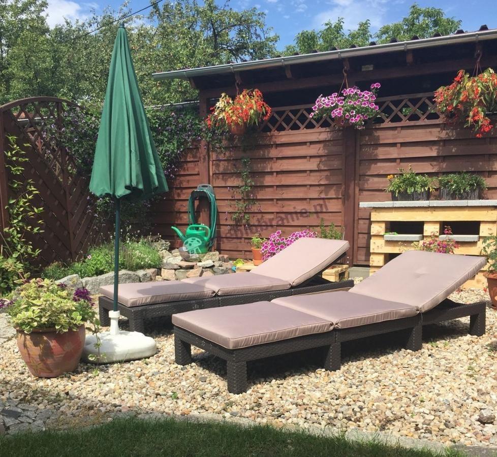 Leżak do ogrodu składany w pięknej aranżacji