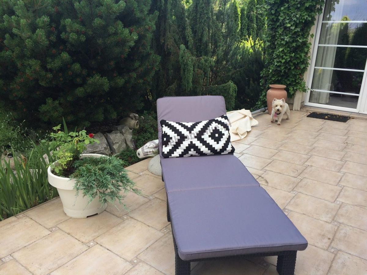Leżanka ogrodowa i na basen z poduszką i regulowanym oparciem Keter