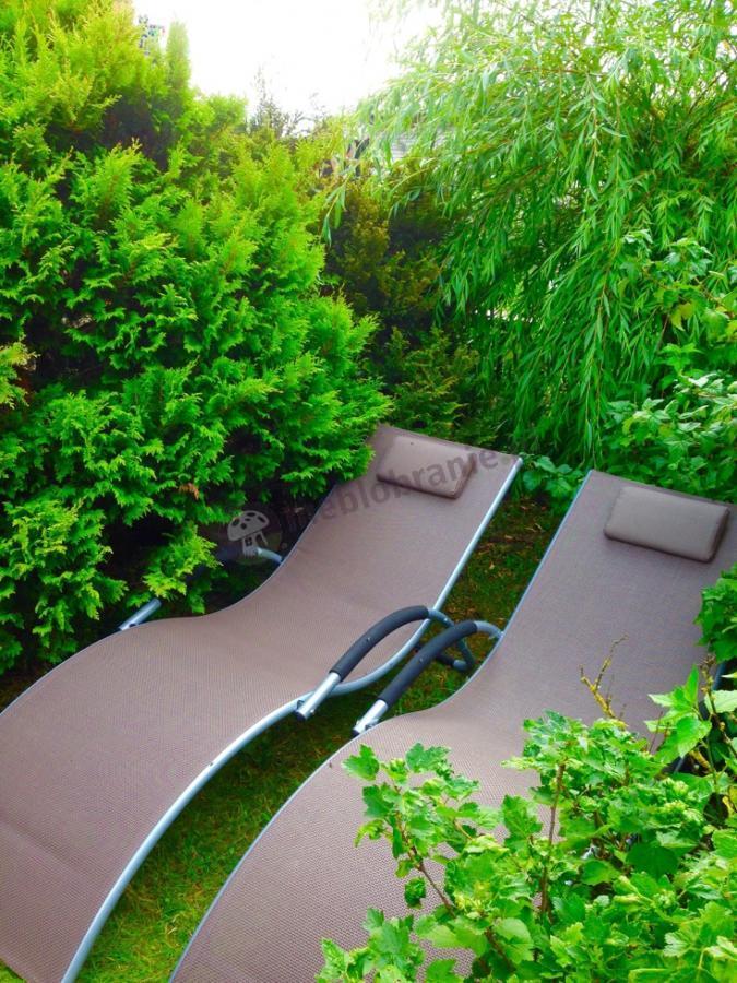 Leżanka ogrodowa w ciemnobeżowym kolorze w zielonym zakątku