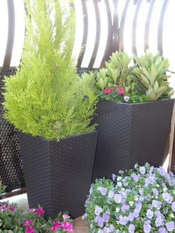 Doniczki ogrodowe z tworzywa sztucznego na rozkwieconym balkonie