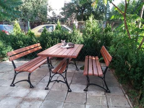 Drewniane meble ogrodowe testowane przez domowego pupila