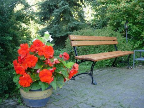 Ławka ogrodowa drewniana w sąsiedztwie donicy z kwiatami