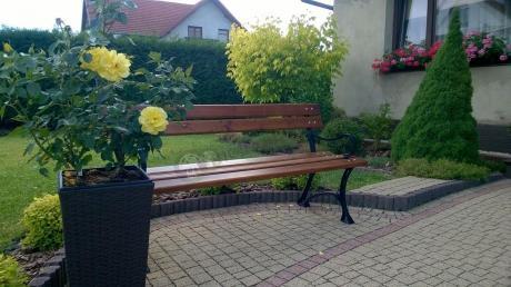 Ławka ogrodowa ozdobiona krzakiem żółtej róży