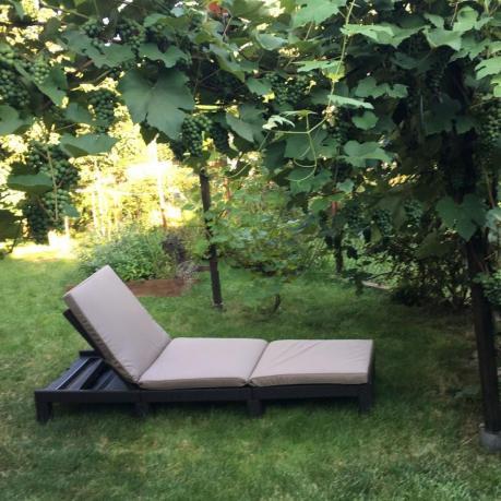 Leżak ogrodowy składany Daytona pod daszkiem z winorośli
