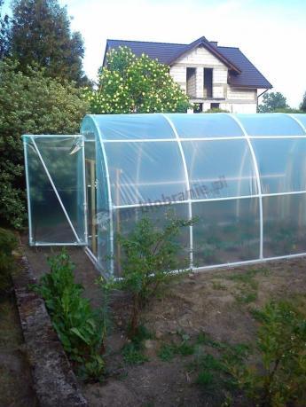 Tunel foliowy ogrodniczy kryjący uprawę pomidorów