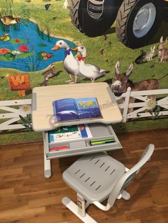 Uniwersalne biurko z regulowanym blatem Piccolino Grey