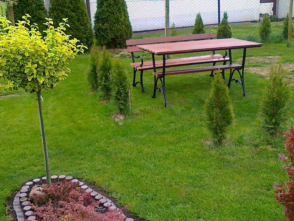Meble ogrodowe żeliwne ustawione pośród zieleni