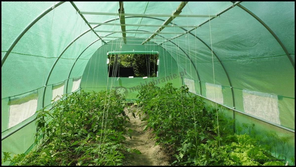 Metalowy tunel foliowy na pomidory z modyfikacjami klienta