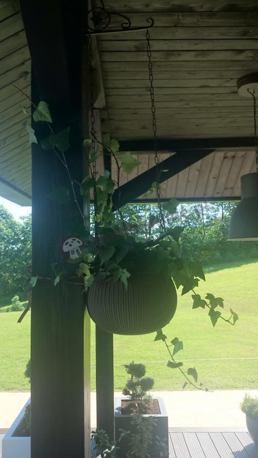 Nowoczesne doniczki balkonowe na zadaszonym tarasie