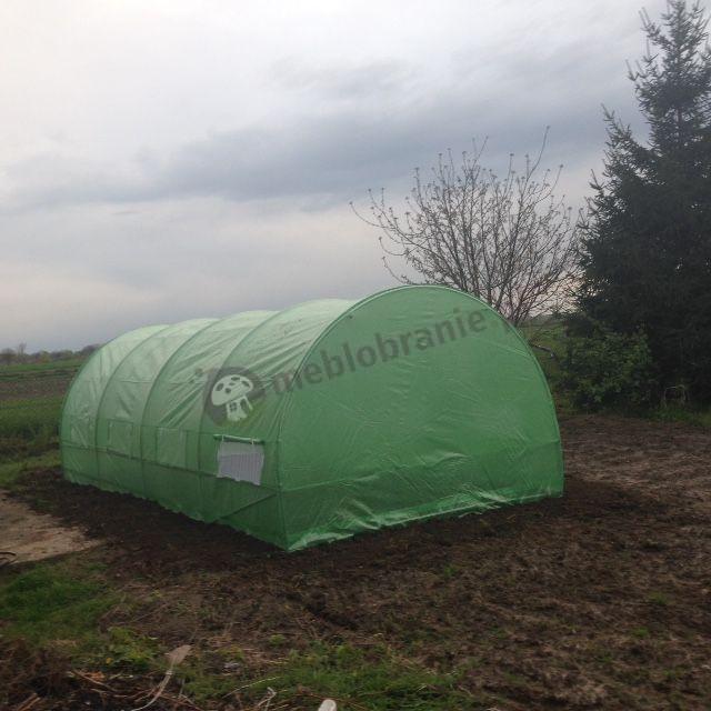 Ogrodniczy namiot foliowy na pomidory ustawiony nad grządką