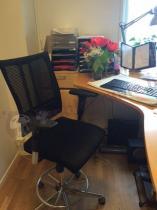 Biurowy fotel @-Motion R18K steel33 chrome Ring Base