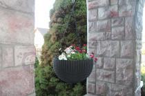 Doniczka wisząca na balkon ze stokrotkami Keter Hanging Sphere Planter