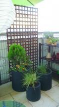 Doniczki na balkon z kolorowymi roślinami