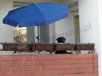 Granatowy parasol Sunline III 150 na balkonie