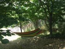 Hamak ogrodowy kolorowy powieszony w cieniu drzew