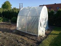 Namiot foliowy na pomidory ustawiony na niewielkiej działce