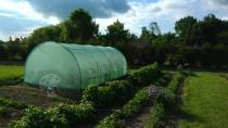 Tunel foliowy metalowa konstrukcja do uprawy warzyw