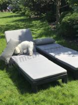 Zestaw leżaków do opalania z poduszkami Daytona Allibert w ogrodzie