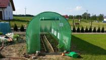 Zielony tunel foliowy z rur stalowych chroniący uprawę warzyw