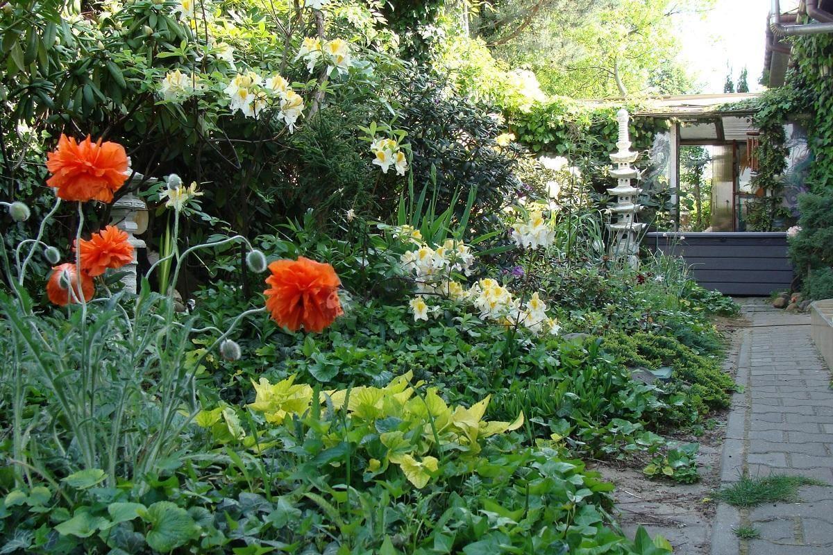 Skrzynia plastikowa do ogrodu ustawiona pośród kwiatów