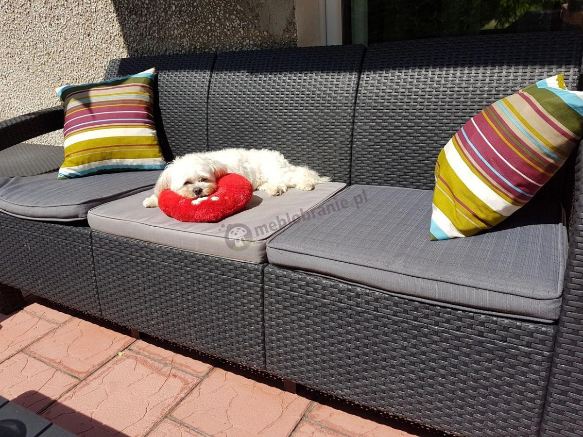 Sofa ogrodowa z wytrzymałego tworzywa ozdobiona kolorowymi jaśkami