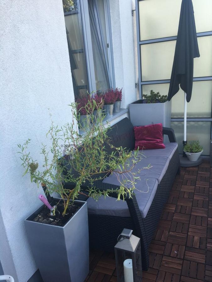 Sofa technorattan Corfu ozdobiona uroczą ogrodową aranżacją