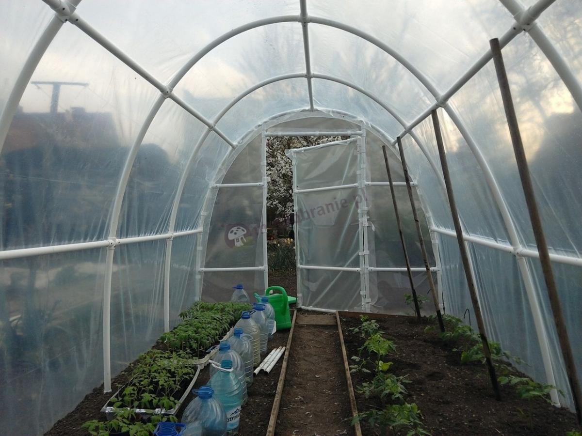 Szklarnia foliowa do przygotowywania rozsady i hodowli warzyw