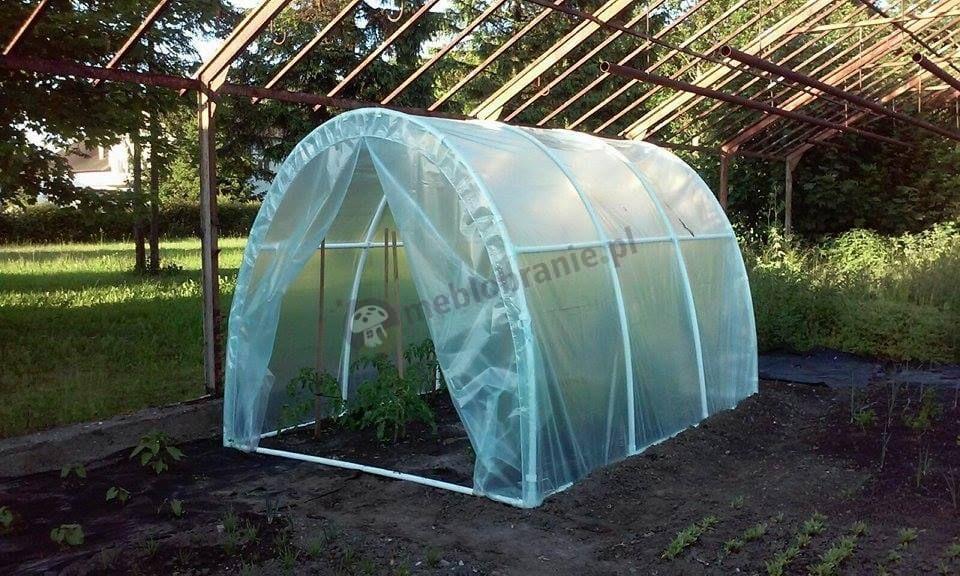 Tunel foliowy na pomidory w szklarniowym ogródku