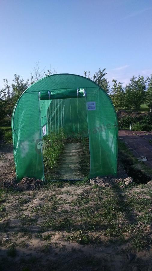 Tunel ogrodowy ze stelażem metalowym na pomidory