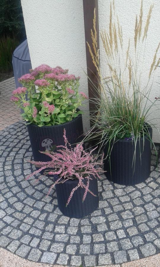 Zestaw doniczek ogrodowych w różnych rozmiarach w grafitowym kolorze