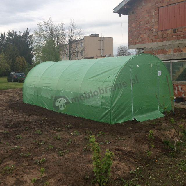 Zielony namiot foliowy do ogrodu używany w sąsiedztwie budynku