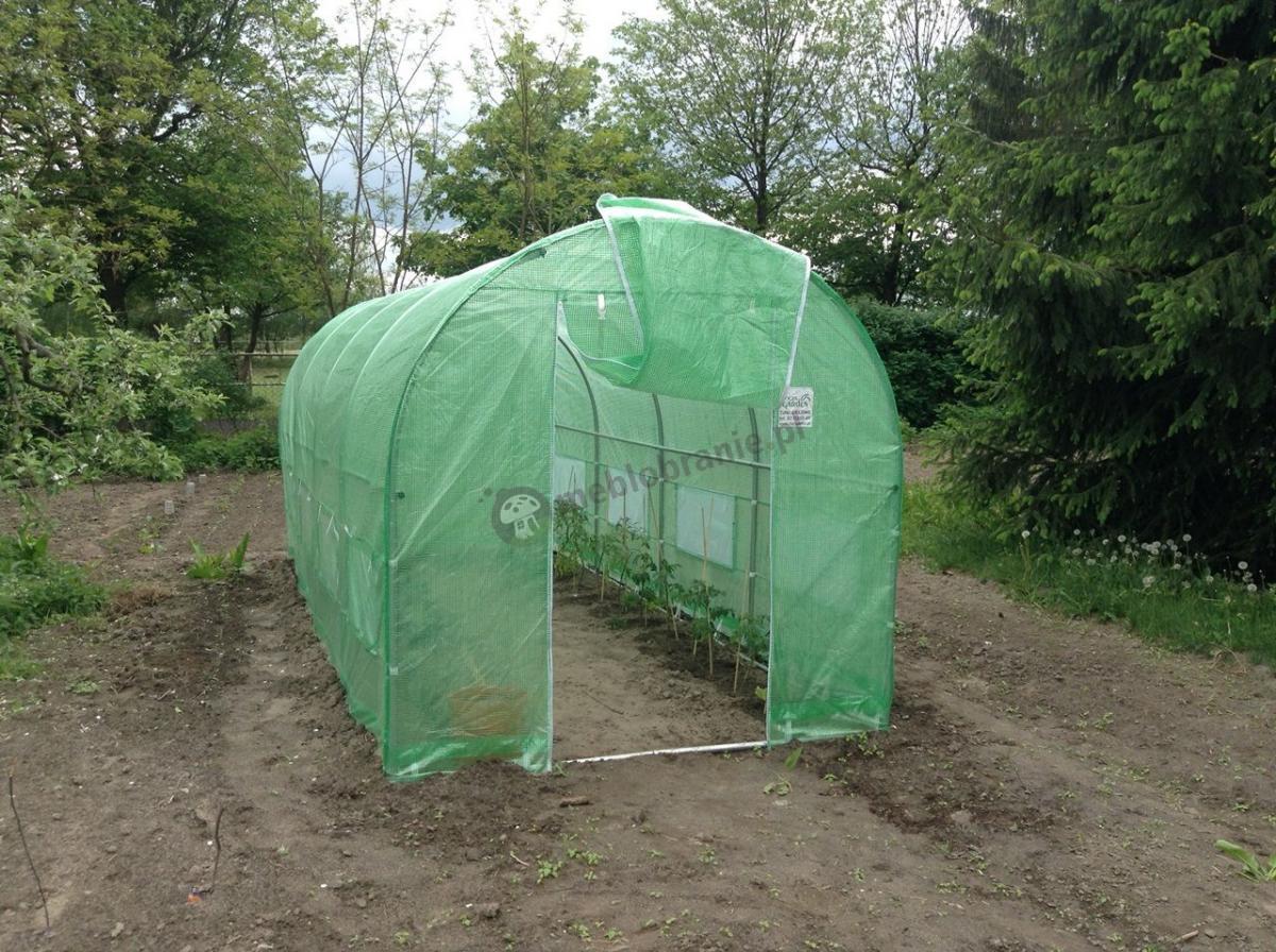 Zielony namiot foliowy na pomidory używany na działce