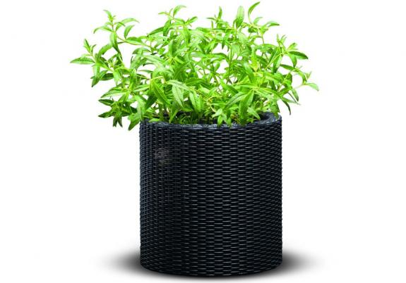 Cylindryczna doniczka Keter - Small Planter (S - 7L) - Antracyt