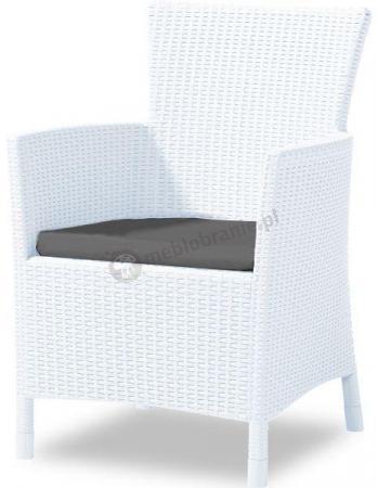 Białe krzesło Iowa