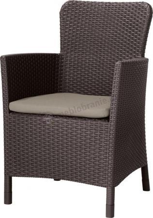 Krzesło Miami w kolorze brązowym