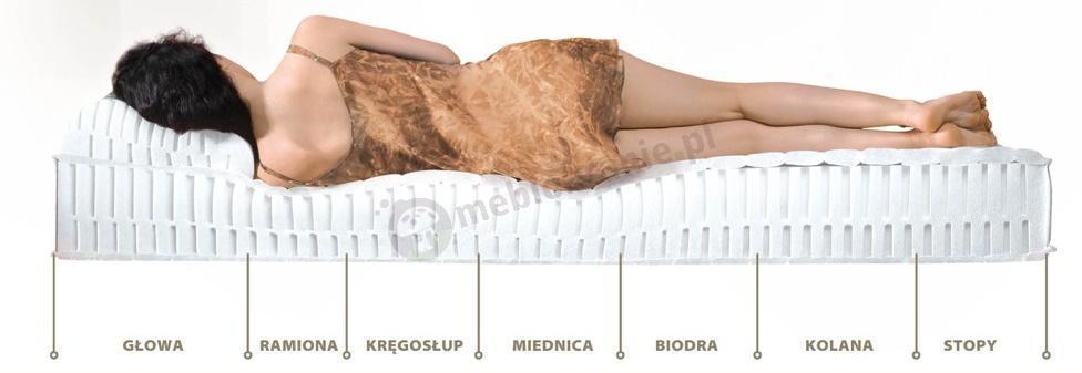 Strefy komfortu materaca Hevea Comfort H3