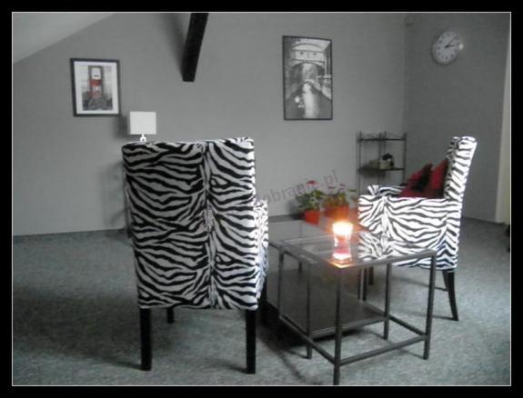 Krzesła Animals w domu klienta