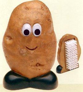 Szczotka do warzyw, ziemniak MSC International Gadget